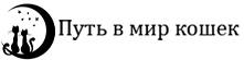 yourroad.ru